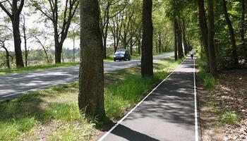 Тротуар и вело полоса